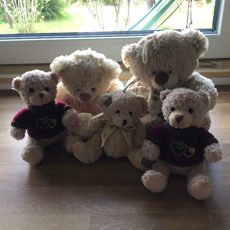 Medvedja družina